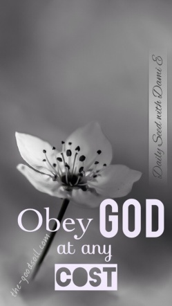 Obey God (White)